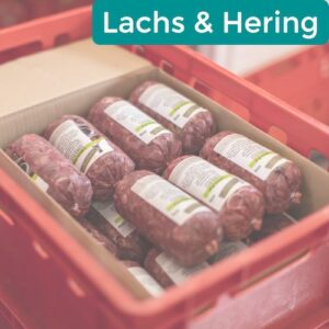 Lachs & Hering